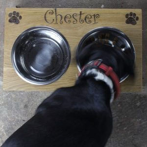 personalised oak dogs bowl in use from above square