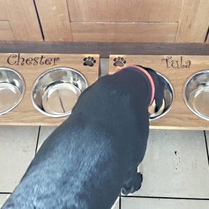 personalised dog bowls