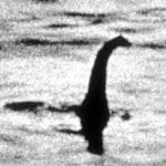 Cadborosaurus willsi Loch Ness Monster