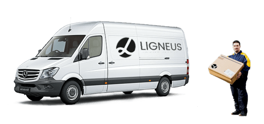 ligneus delivery information