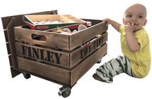 Finley's mobile crate toy tidy